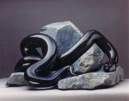 Black-Snake-31s